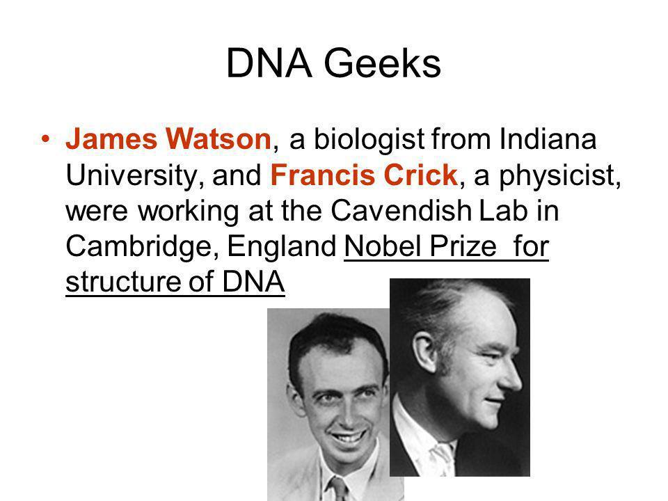 DNA Geeks