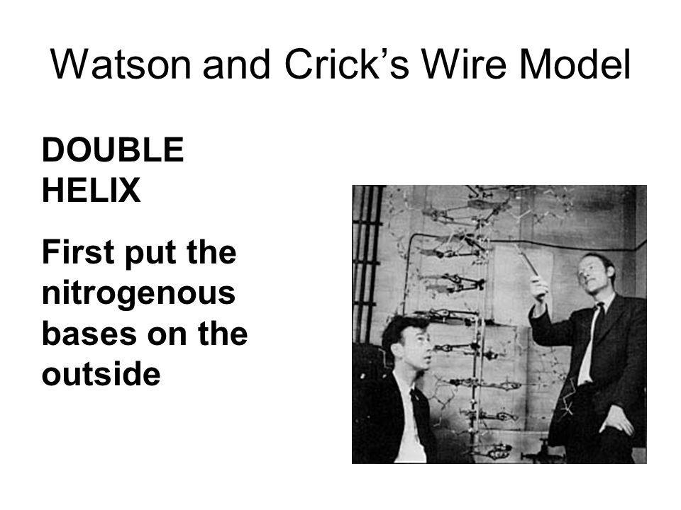 Watson and Crick's Wire Model