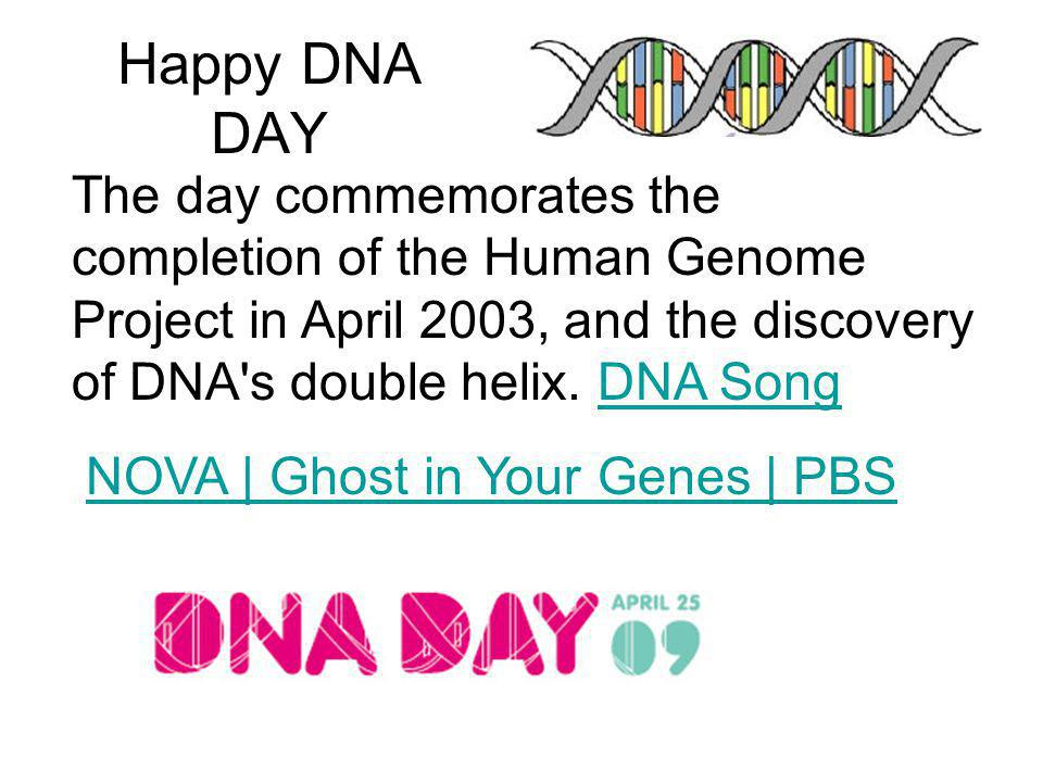 Happy DNA DAY The day commemorates the completion of the Human Genome Project in April 2003, and the discovery of DNA s double helix. DNA Song.