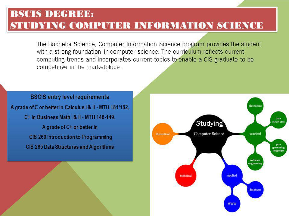 BSCIS Degree: Studying Computer Information science