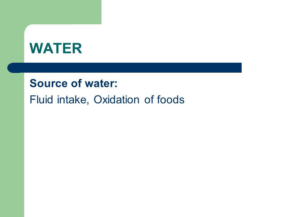 WATER Source of water: Fluid intake, Oxidation of foods