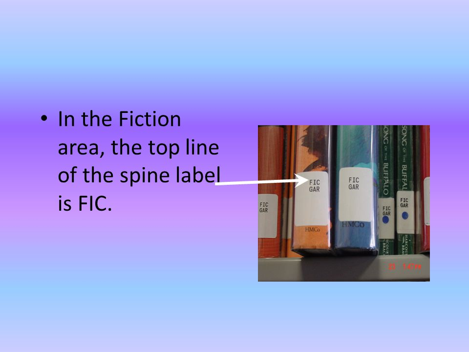 In the Fiction area, the top line of the spine label is FIC.