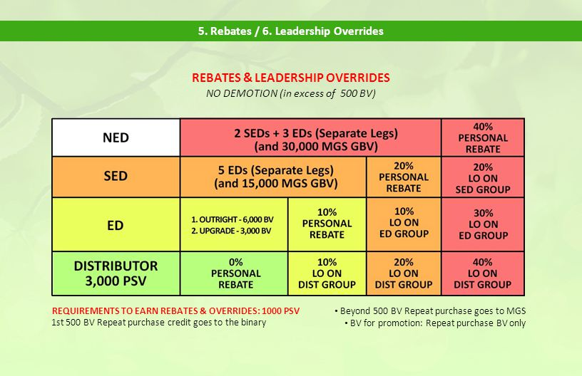 5. Rebates / 6. Leadership Overrides REBATES & LEADERSHIP OVERRIDES