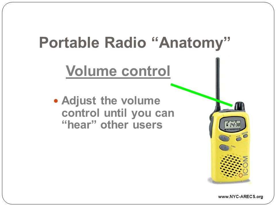 Portable Radio Anatomy