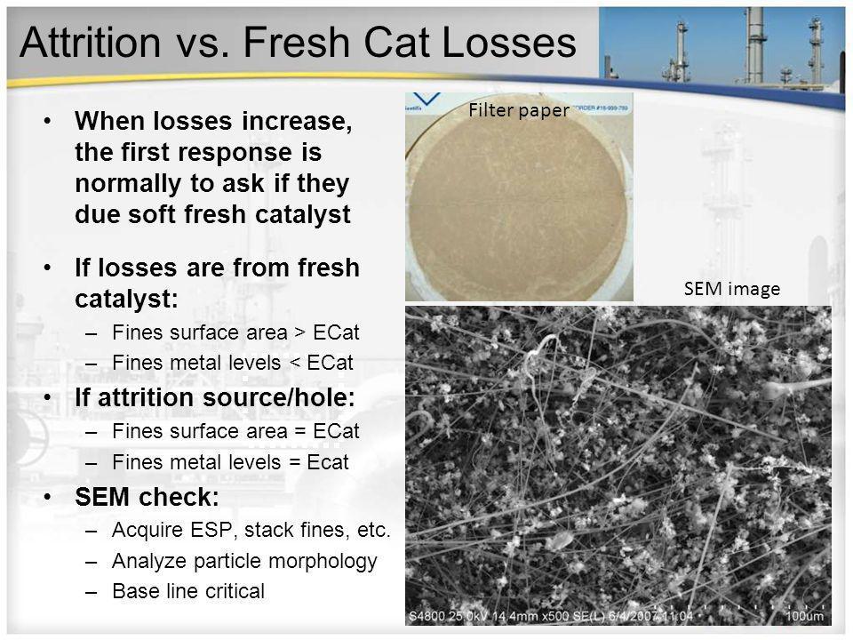Attrition vs. Fresh Cat Losses