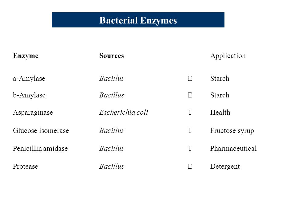 Bacterial Enzymes Enzyme Sources Application a-Amylase Bacillus E