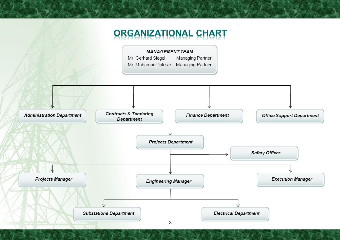 Organizational Chart MANAGEMENT TEAM