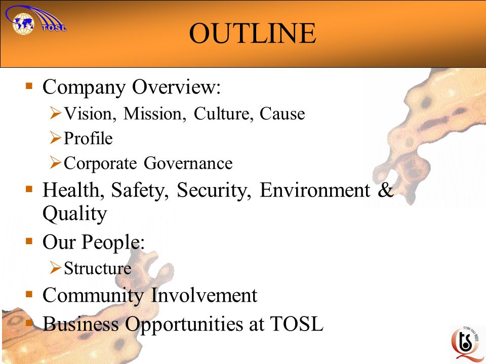OUTLINE Company Overview: