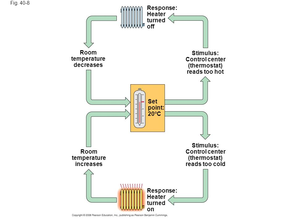 Response: Heater turned off Room temperature decreases Stimulus: