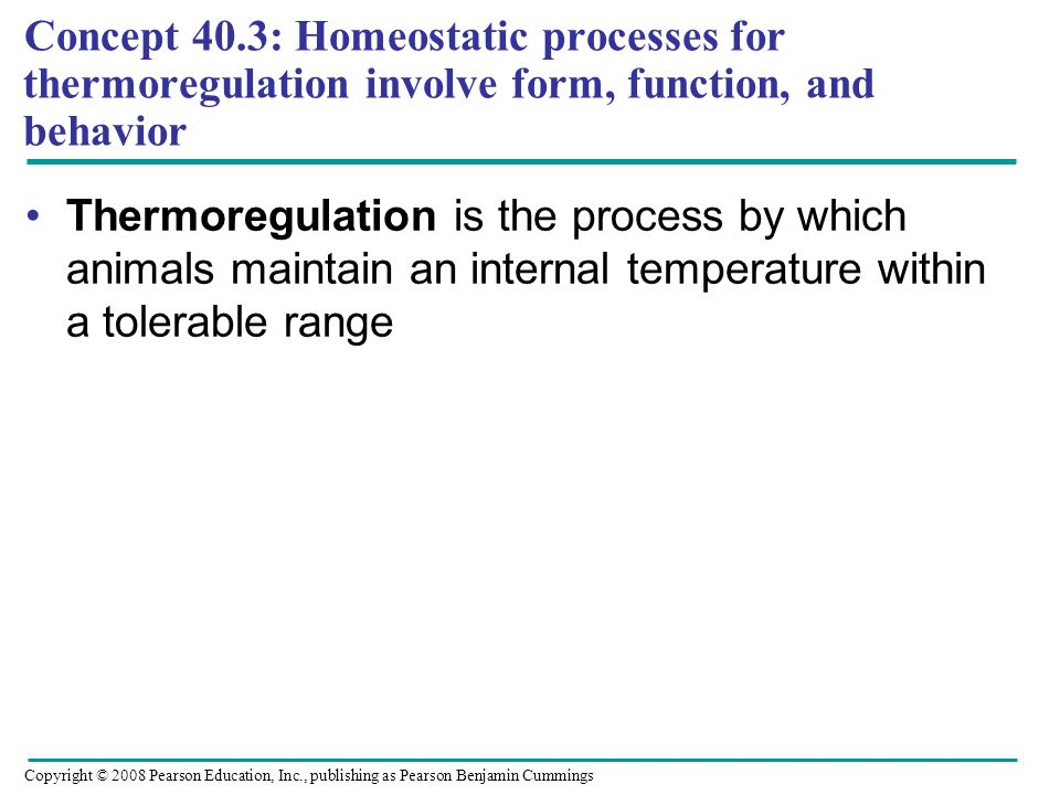 Concept 40.3: Homeostatic processes for thermoregulation involve form, function, and behavior