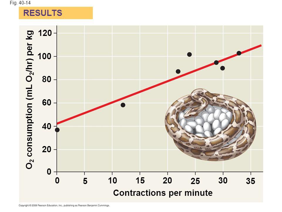 O2 consumption (mL O2/hr) per kg