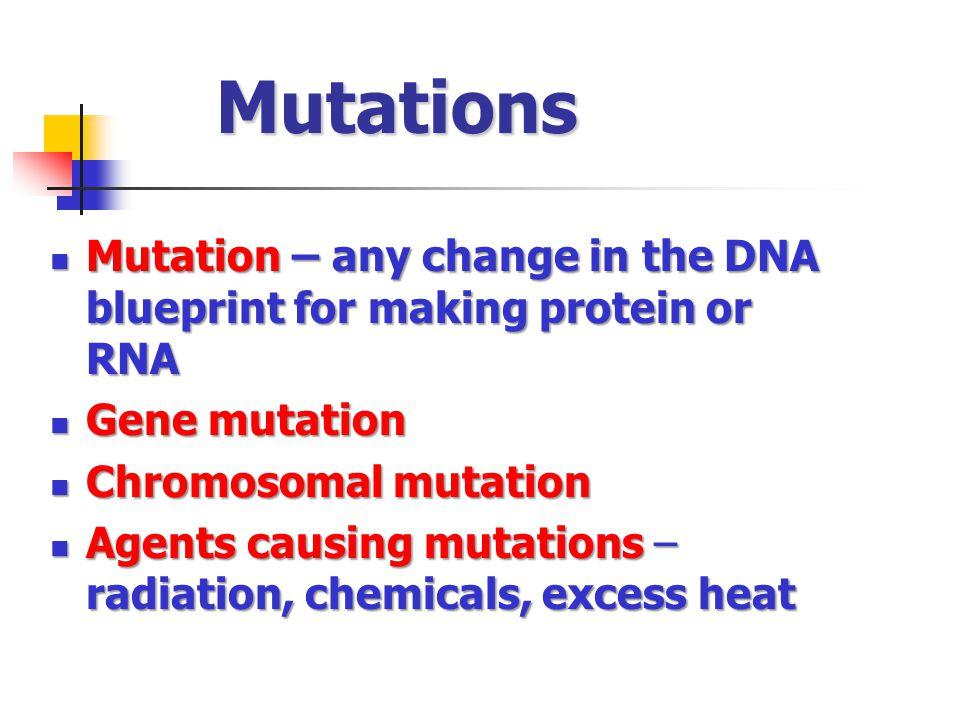 Mutations Mutation – any change in the DNA blueprint for making protein or RNA. Gene mutation. Chromosomal mutation.