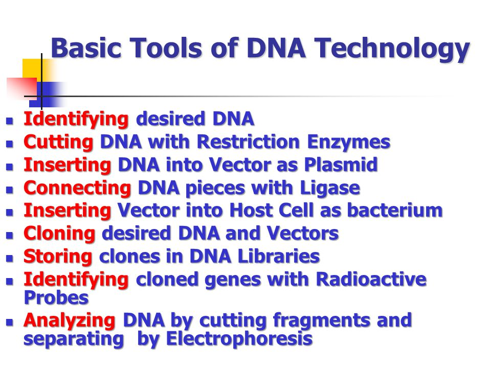 Basic Tools of DNA Technology