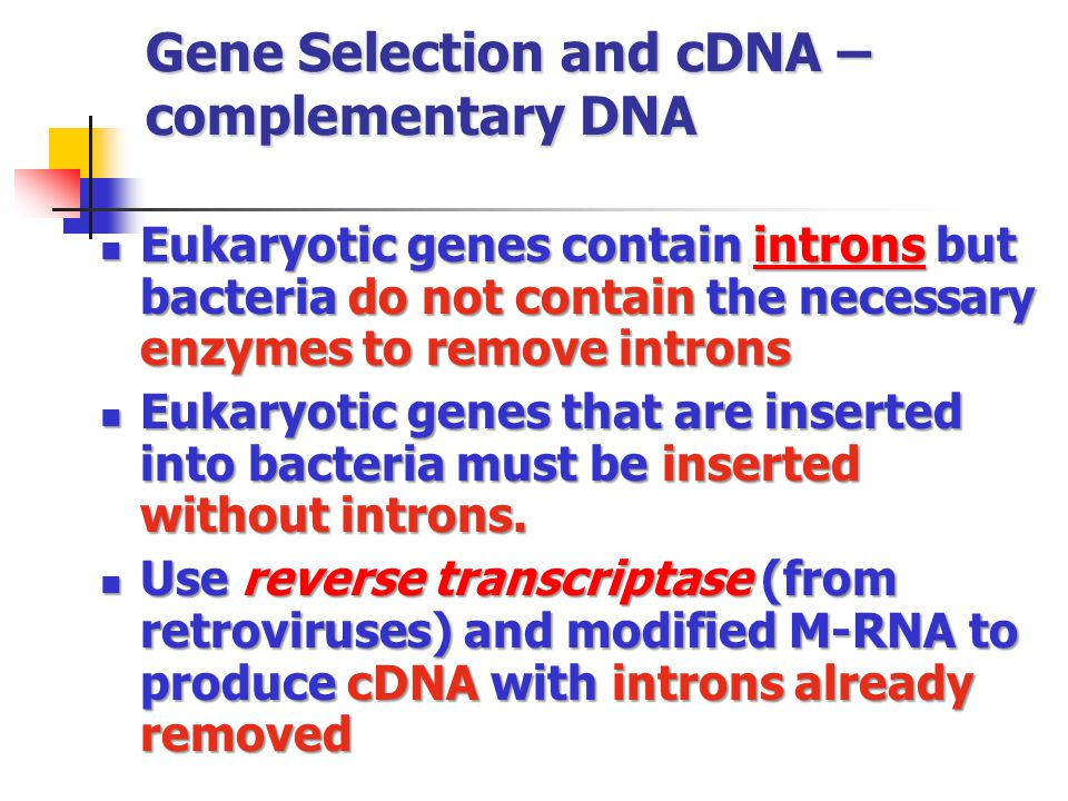 Gene Selection and cDNA – complementary DNA
