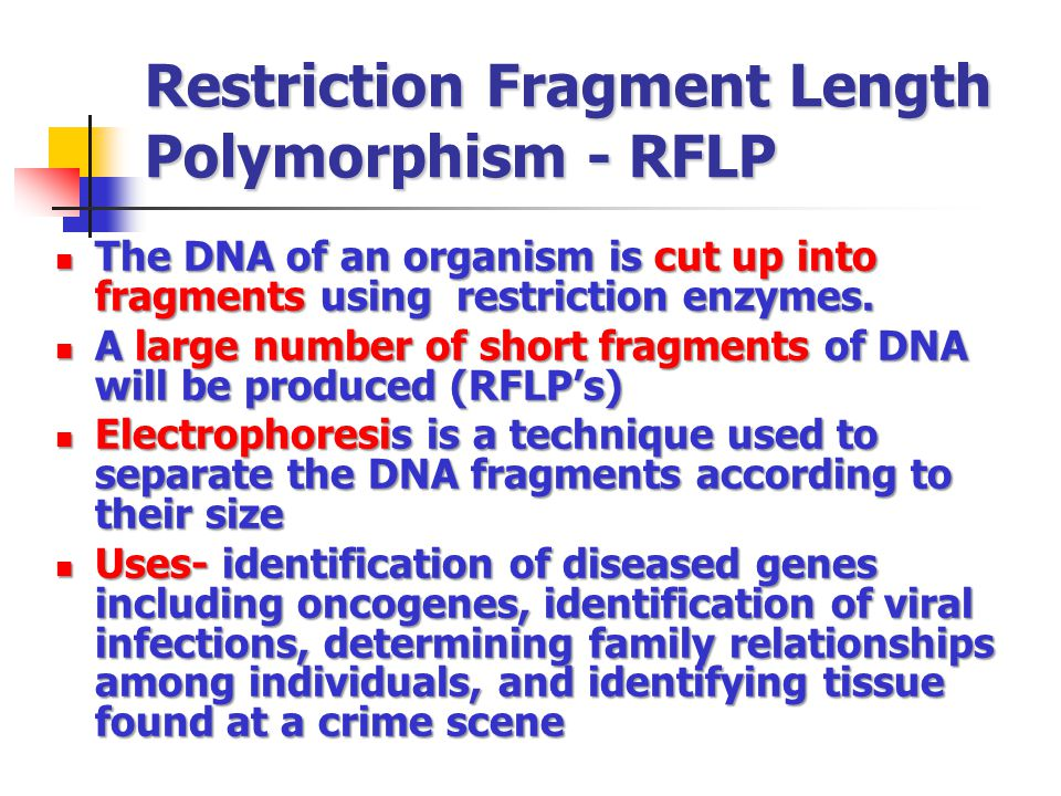 Restriction Fragment Length Polymorphism - RFLP