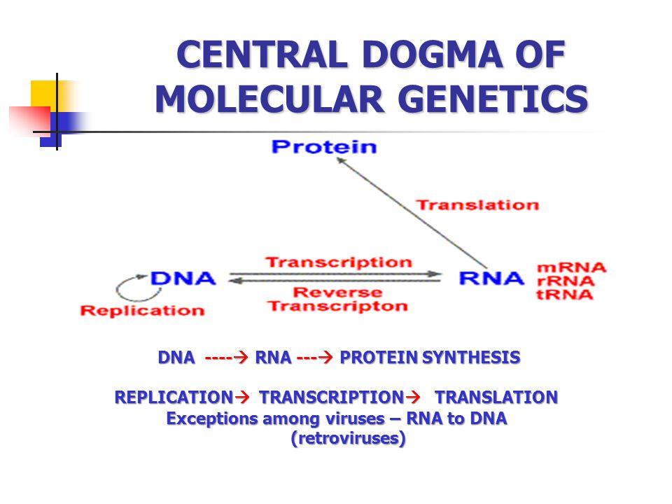 CENTRAL DOGMA OF MOLECULAR GENETICS
