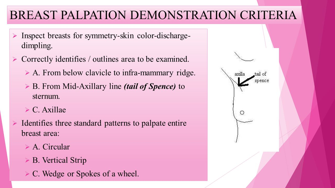 BREAST PALPATION DEMONSTRATION CRITERIA