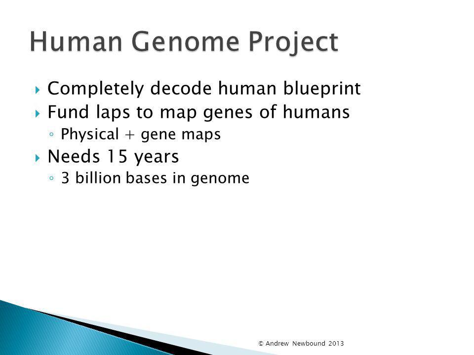 Human Genome Project Completely decode human blueprint
