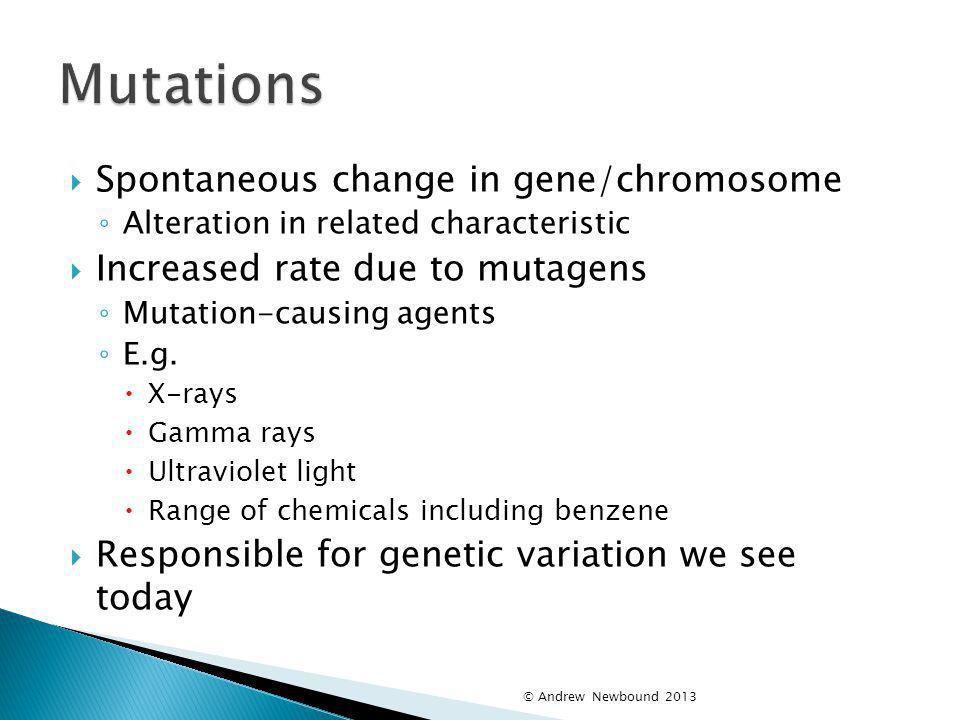 Mutations Spontaneous change in gene/chromosome