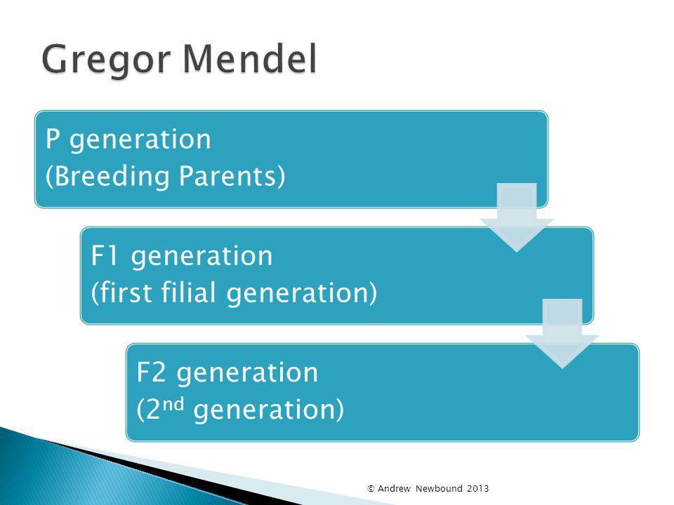 Gregor Mendel P generation (Breeding Parents)