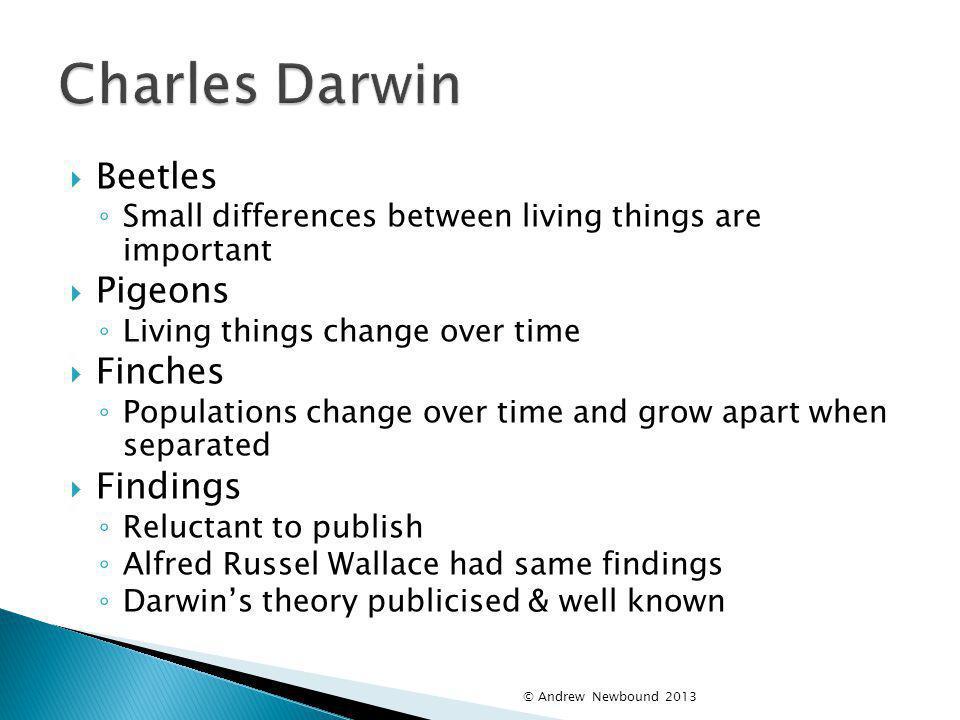 Charles Darwin Beetles Pigeons Finches Findings