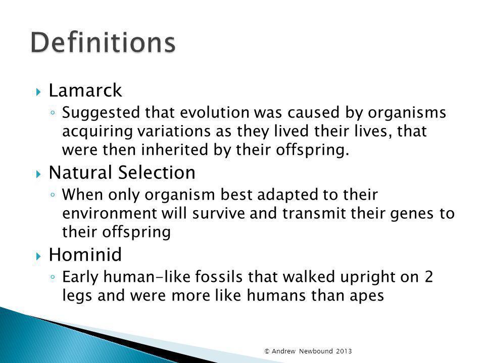 Definitions Lamarck Natural Selection Hominid