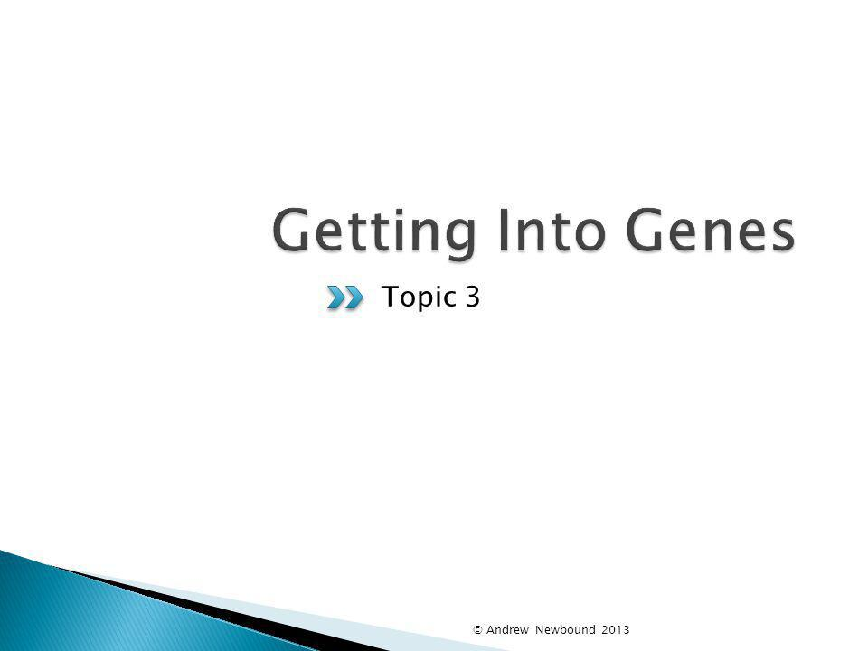 Getting Into Genes Topic 3 © Andrew Newbound 2013