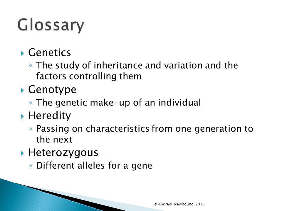 Glossary Genetics Genotype Heredity Heterozygous