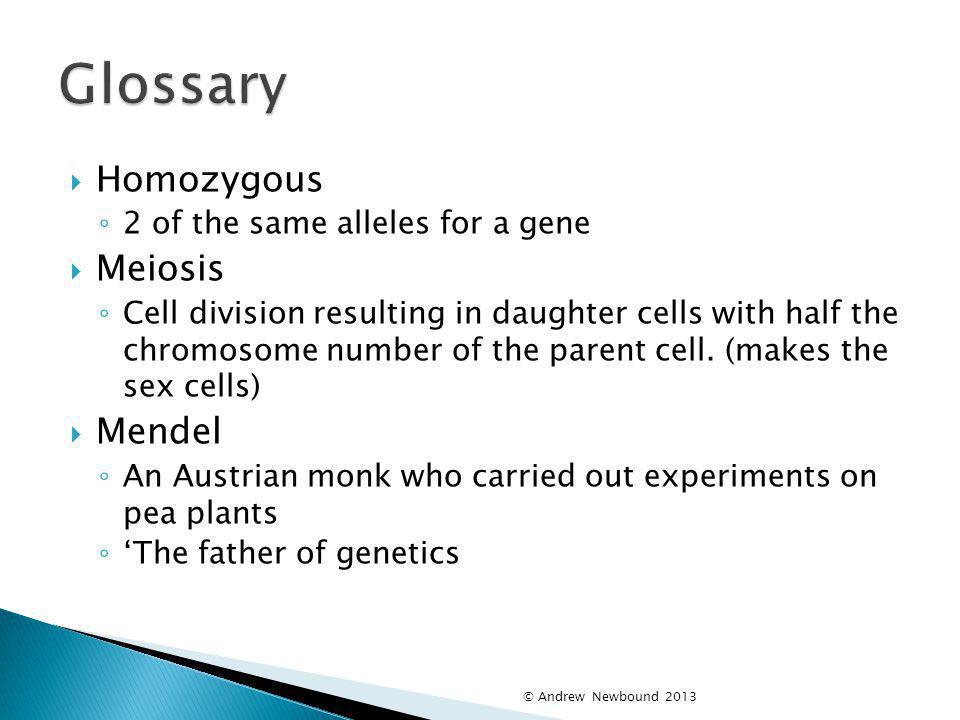 Glossary Homozygous Meiosis Mendel 2 of the same alleles for a gene