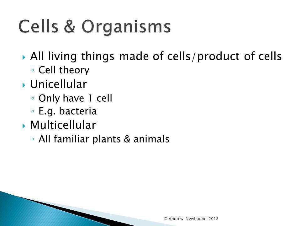 Cells & Organisms All living things made of cells/product of cells
