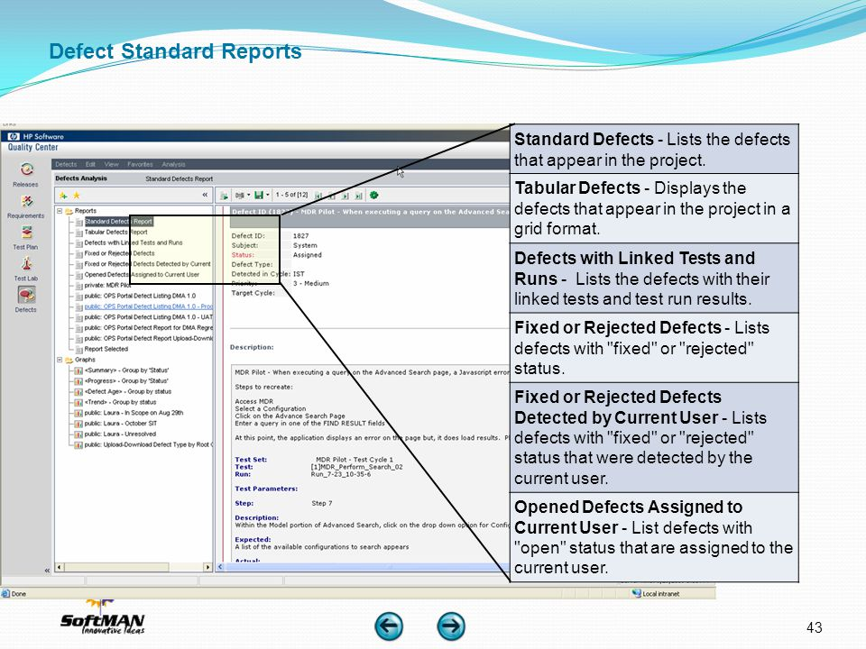 Defect Standard Reports