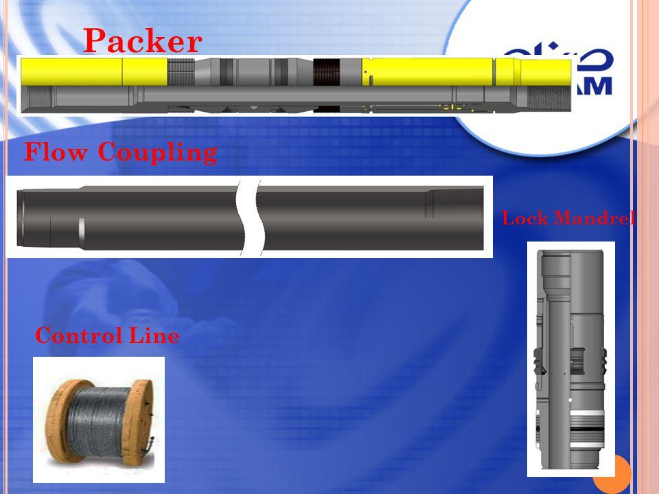 Packer Flow Coupling Lock Mandrel Control Line