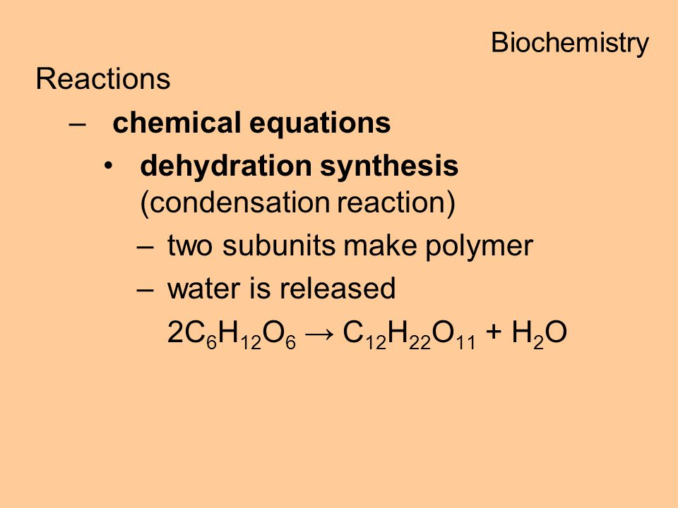 dehydration synthesis (condensation reaction)