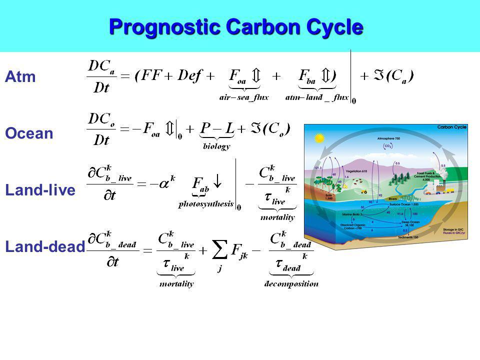 Prognostic Carbon Cycle