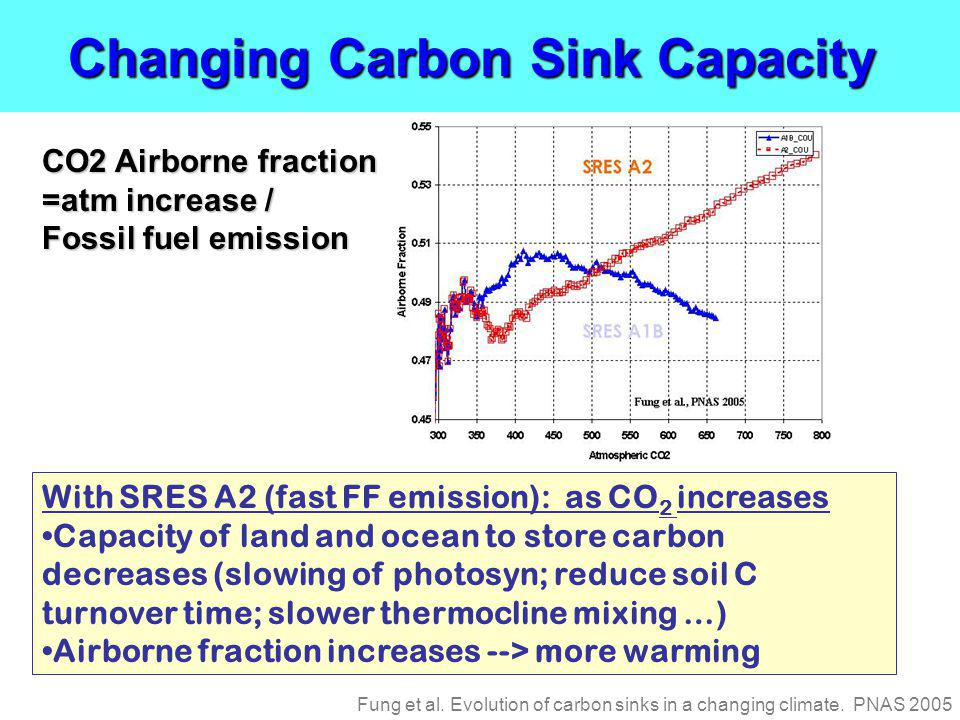 Changing Carbon Sink Capacity