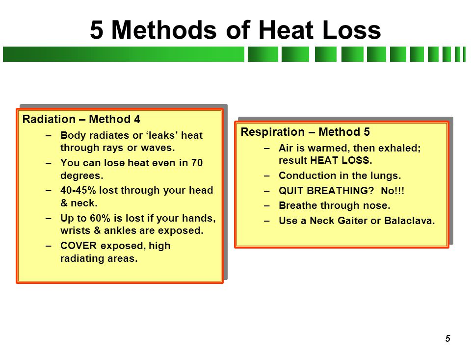 5 Methods of Heat Loss Radiation – Method 4 Respiration – Method 5