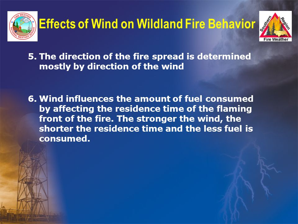 Effects of Wind on Wildland Fire Behavior