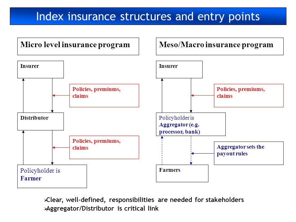 Index insurance structures and entry points
