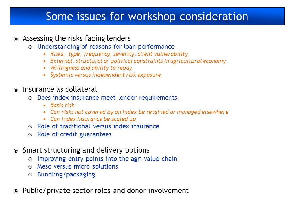 Some issues for workshop consideration