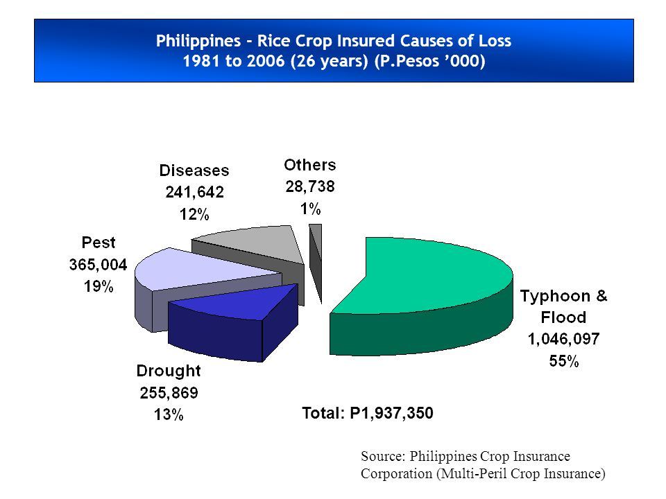 Philippines - Rice Crop Insured Causes of Loss 1981 to 2006 (26 years) (P.Pesos '000)