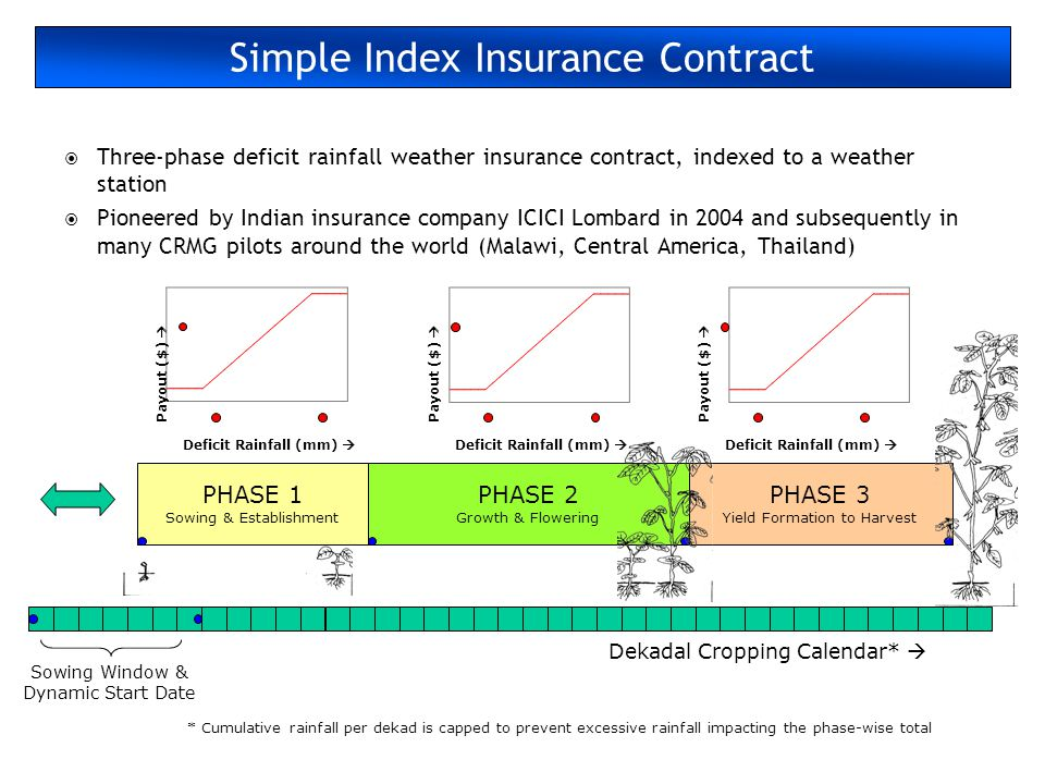 Simple Index Insurance Contract