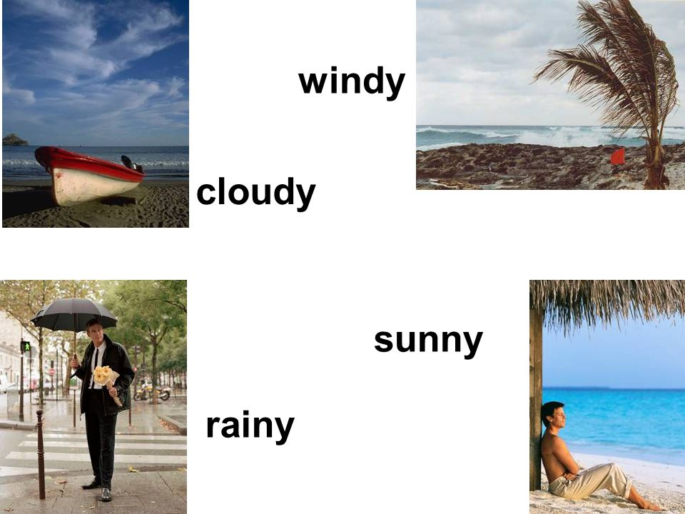 windy cloudy sunny rainy
