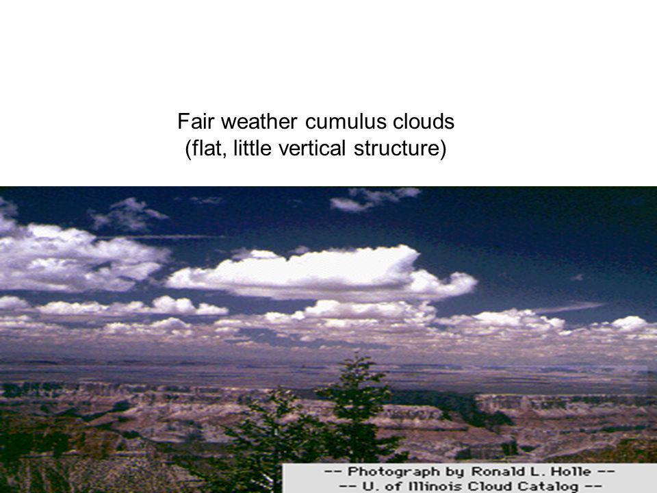 Fair weather cumulus clouds (flat, little vertical structure)