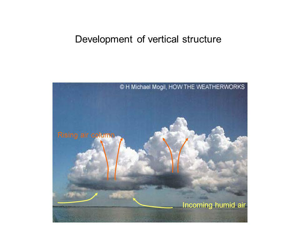 Development of vertical structure