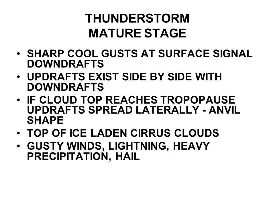 THUNDERSTORM MATURE STAGE