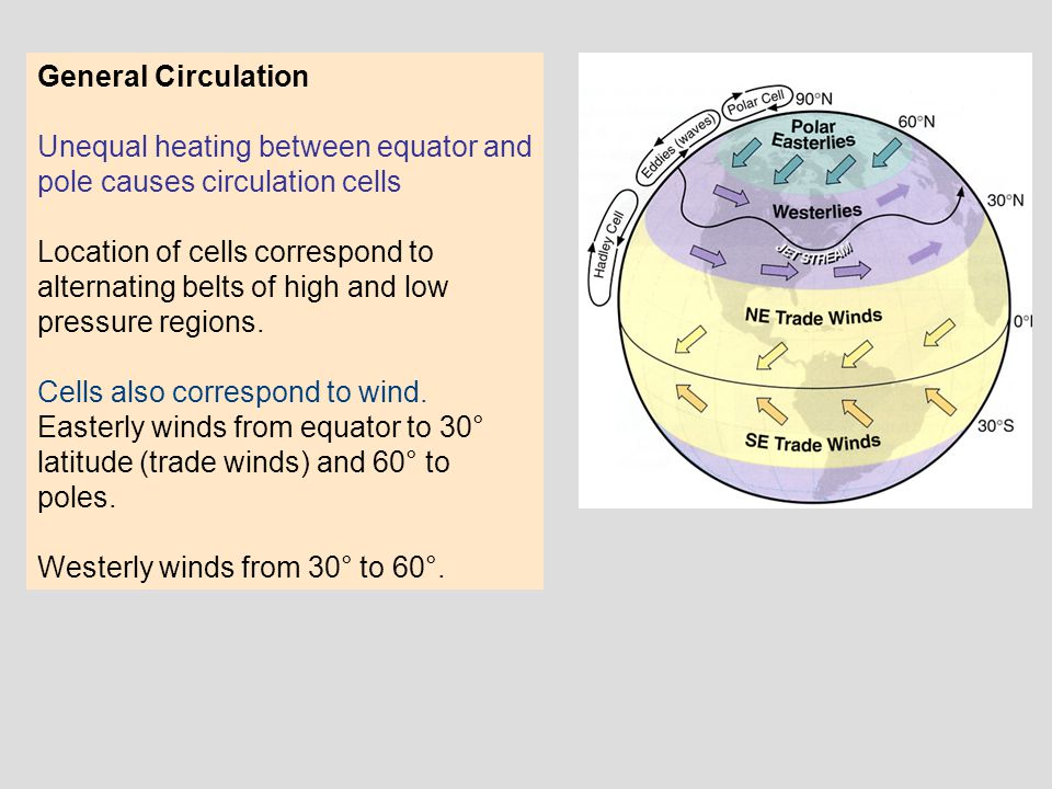 General Circulation Unequal heating between equator and pole causes circulation cells.