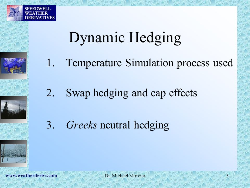 Dynamic Hedging Temperature Simulation process used