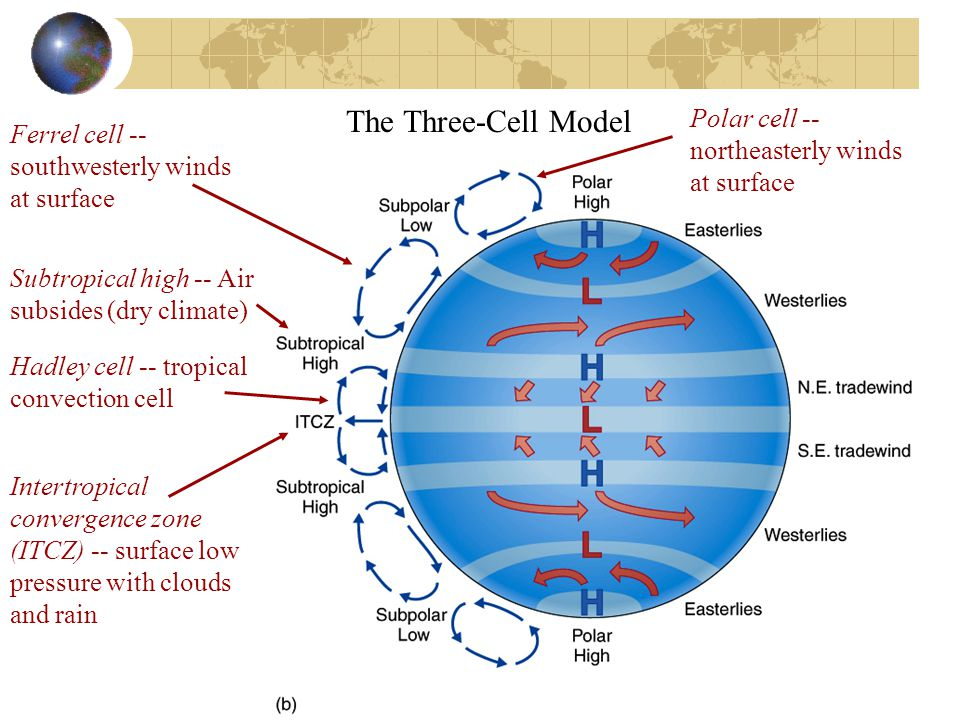 The Three-Cell Model Polar cell -- northeasterly winds at surface