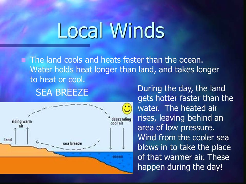 Local Winds The land cools and heats faster than the ocean. Water holds heat longer than land, and takes longer to heat or cool.