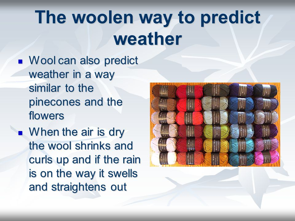 The woolen way to predict weather